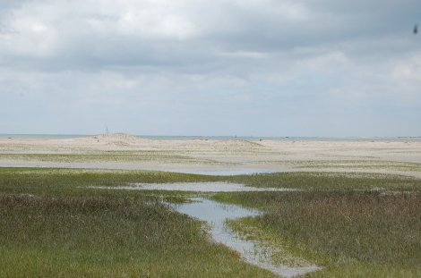 Sheryl_Beach-Hiking-at-Low-Tide-Path-Rachel-Carson-Reserve-NC